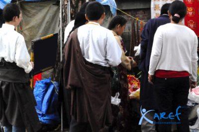 laureato tibetano-laureato cinese-aref international onlus-disoccupazione laureato tibetano-tibet-lavoro tibetano-lavoro laureato tibetano